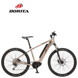 Borita New Model Shadow High Quality Aluminum Alloy Popular Electric Bicycle